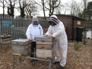 Beekeepers from the Southport & District beekeepers branch